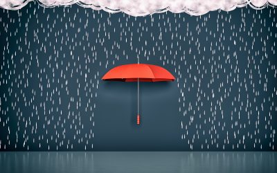 """Crisis Management Weaknesses – """"An Umbrella in a Manhole"""""""